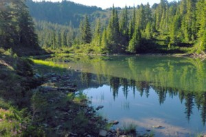 Olympic National Park Hiking Tours :: Our 6-day all-inclusive adventure provides 1st class lodging within the park, plus daily hikes to beautiful lakes, creeks & rivers, through rain forests & coastal beaches.