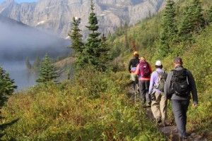 Timberline Adventures | Park Hiking Tours