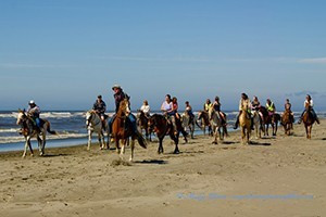 Horseback Rides on the Beach at Ocean Shores