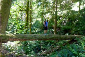 Timberline Adventures | Spring Hiking Package