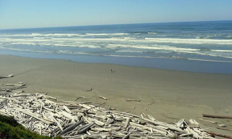 Kalaloch Beaches Washington Alltrips