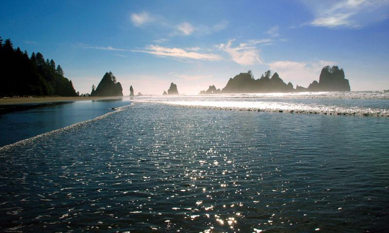 Shi Shi Beach Washington Alltrips