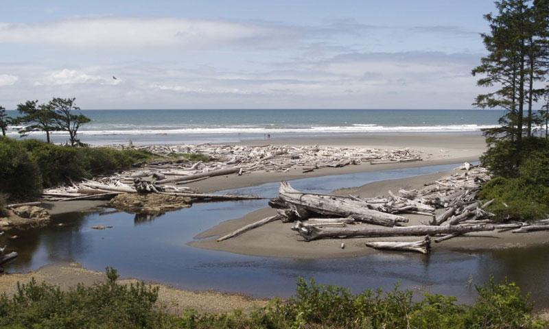 Hoh River meets the Pacific Ocean in Olympic National Park