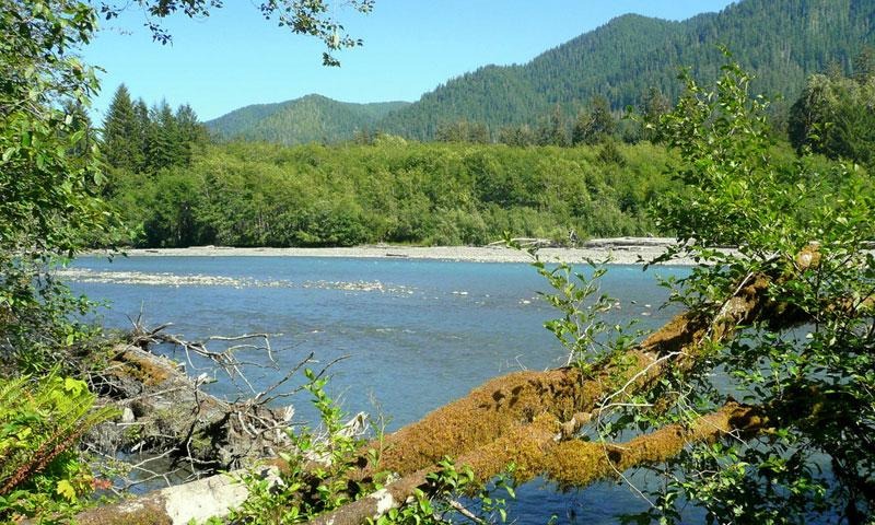 Hoh River in Olympic National Park