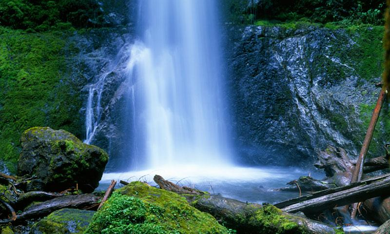 Marymere Falls in Olympic National Park
