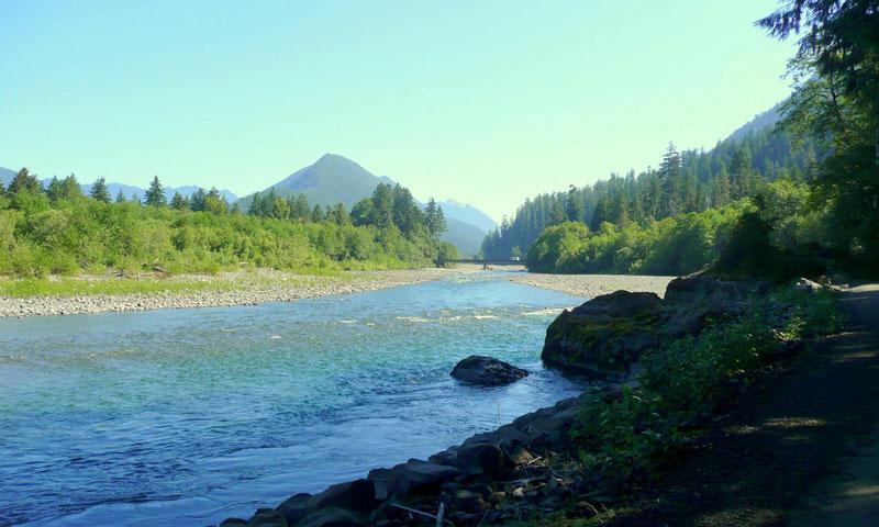 Quinault River in Olympic National Park