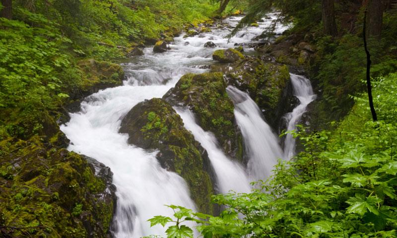 Sol Duc Falls in Olympic National Park
