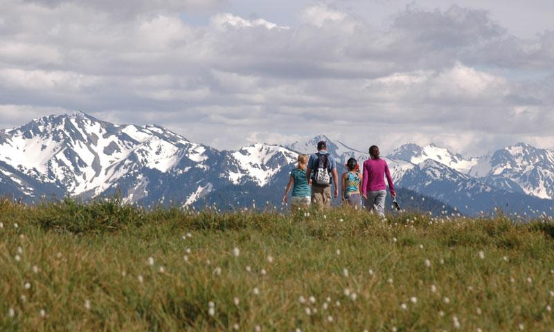 Family hiking in the Olympic Mountains