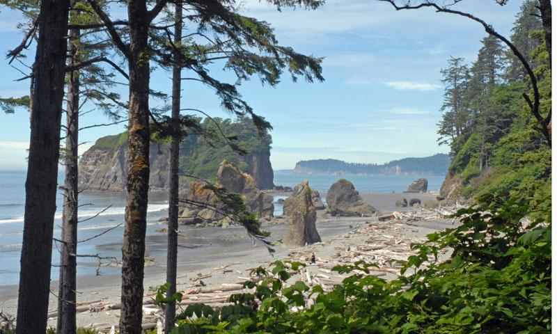 The Olympic Coast National Marine Sanctuary