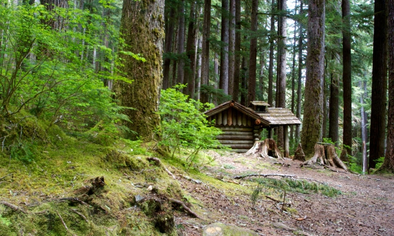 Backcountry Shelter in Olympic National Park