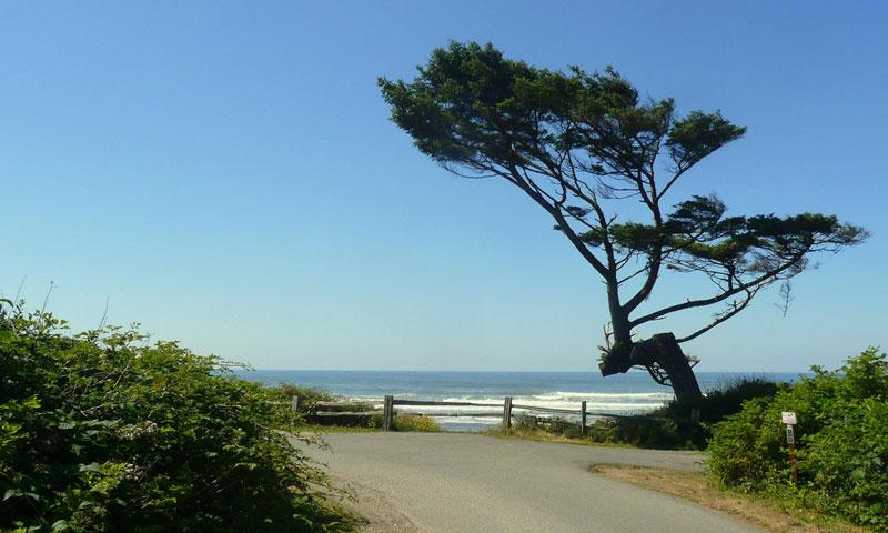 Kalaloch Campground Olympic National Park Alltrips