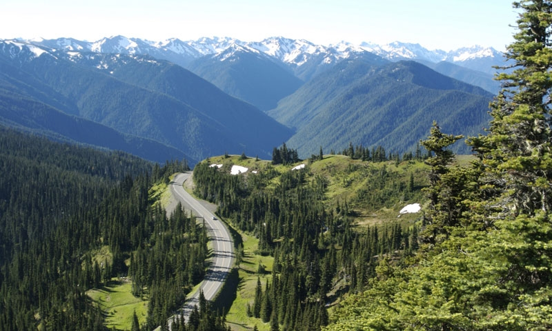 Hurricane Ridge Road in Olympic National Park
