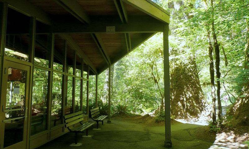 Hoh Rainforest Visitor Center