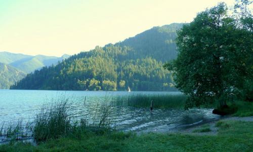 Log Cabin Resort, Lake Crescent Washington - AllTrips