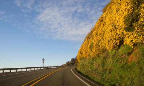 Pacific Coast Byway Washington