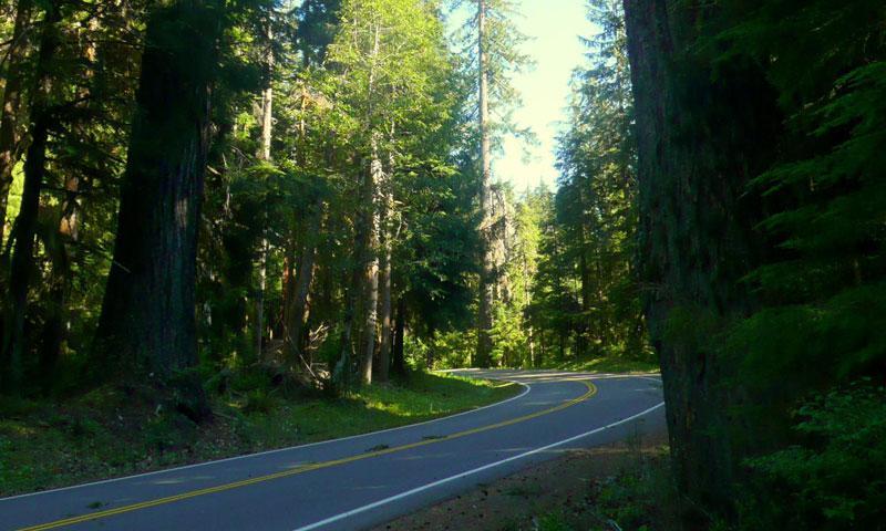 Sol Duc River Road