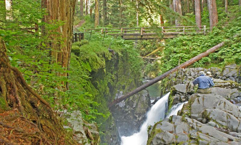 Bridge and Trail over Sol Duc Falls
