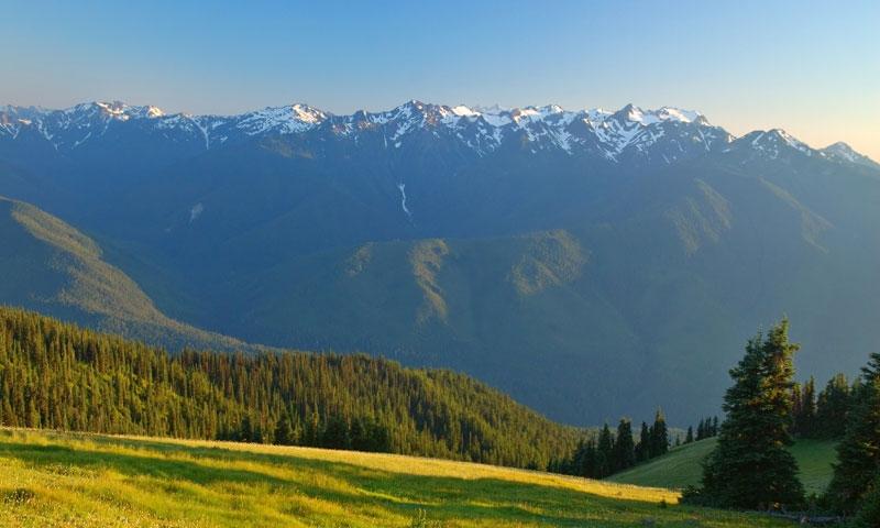 All Seasons Rv >> Hurricane Ridge in Washington's Olympic National Park ...