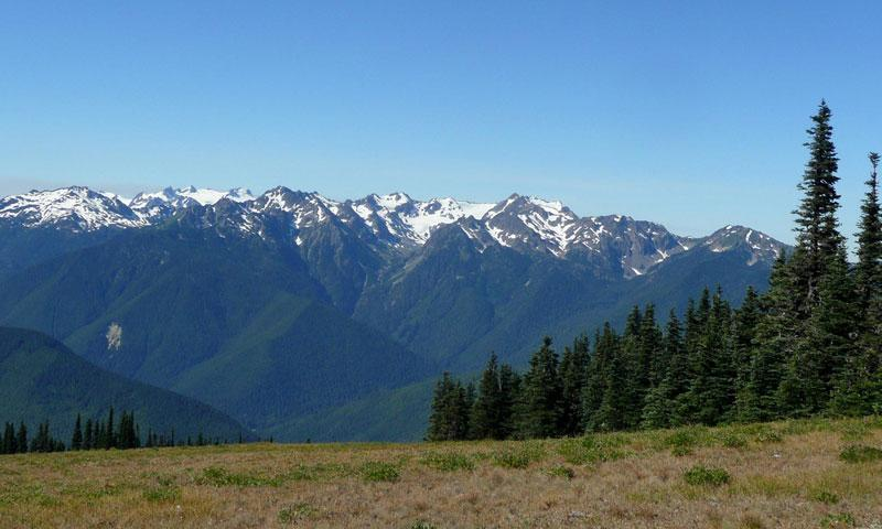 Hurricane Ridge in Olympic National Park