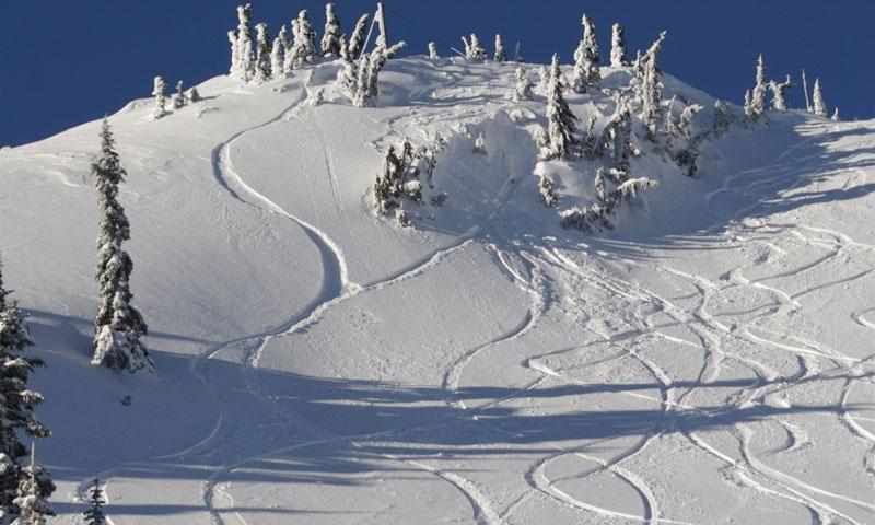 Ski Tracks on Hurricane Ridge in Olympic National Park