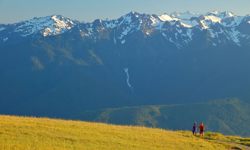 Hiking on Hurricane Ridge in Olympic National Park